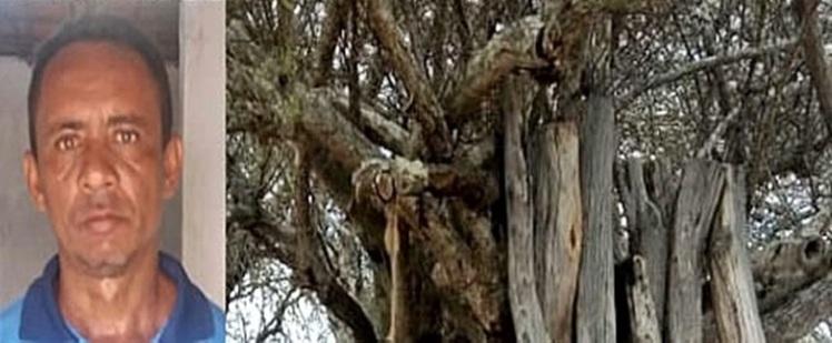 Homem--encontrado-morto-pendurado-em-rvore-na-zona-rural-de-Araci